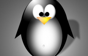 Linux主机名映射