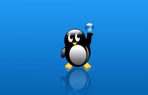 Linux下端口转发常用方法
