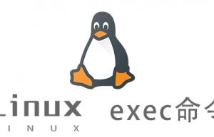 Linux常用命令—exec命令