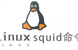 Linux常用命令—squid命令