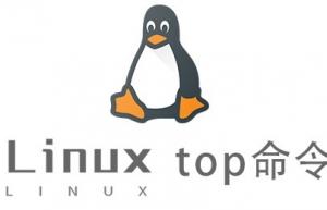 Linux常用命令—top命令