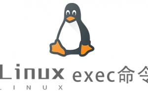 Linux常用命令exec命令具体使用方法