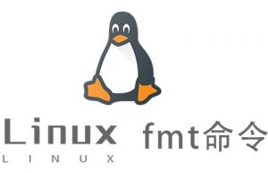 Linux常用命令—fmt命令